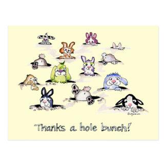 Bunnies: Thanks a Hole Bunch Postcard