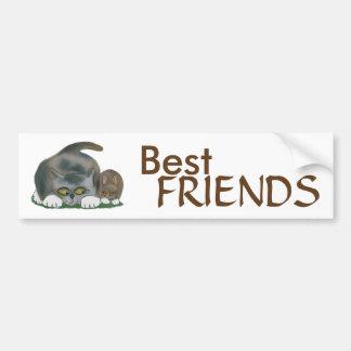 Bunny and Kitten are Best Friends Bumper Sticker