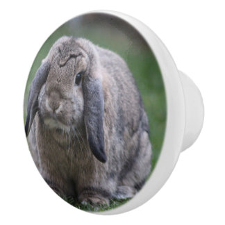 bunny ceramic knob
