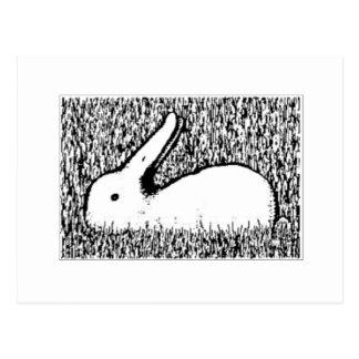 Bunny Ducky Postcard
