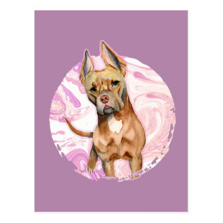 """Bunny Ears"" 3 Pit Bull Dog Watercolor Painting Postcard"