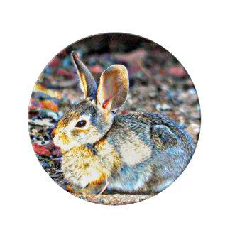 """Bunny In Sunlight"" Decorative Porcelain Plate"