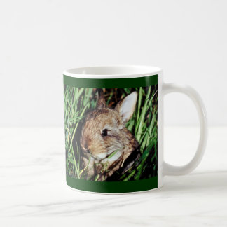 Bunny in the grass mugs