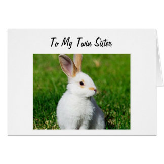 BUNNY IS HOPPING BY TO YOUR TWIN SISTER BIRTHDAY CARD