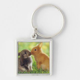 Bunny Kiss Silver-Colored Square Key Ring