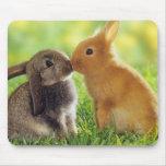 Bunny Kiss Mouse Pad