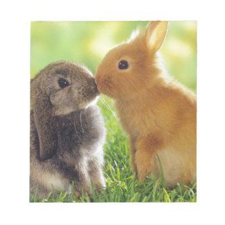 Bunny Kiss Notepad