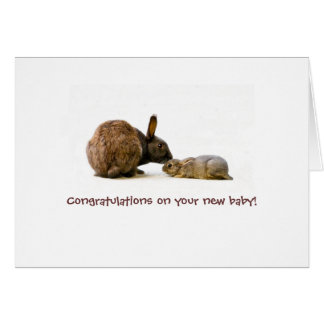 Bunny mother & baby - new baby card