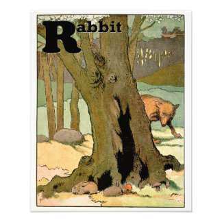 Bunny Rabbit and Wolf in the Forest Alphabet Photo Print