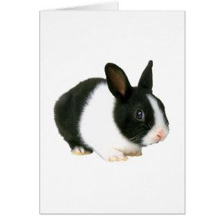 Bunny Rabbit Black & White Greeting Cards