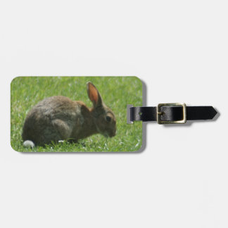 Bunny Rabbit Luggage Tag