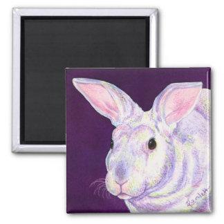 "Bunny Rabbit Magnet - ""Mr. Personality"""