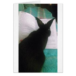 Bunny Reading Greeting Card
