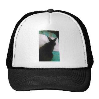 Bunny Reading Trucker Hats