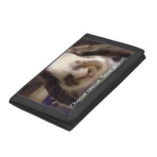 Bunny wallet