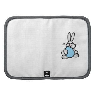 Bunny with Baby Blue Egg Organizers