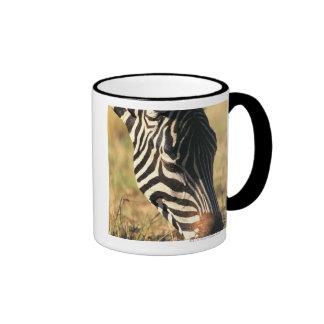 Burchell's zebra ringer mug