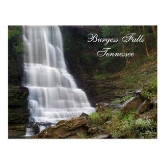 Burgess Falls TN  Postcard