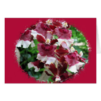 Burgundy Orchids Card