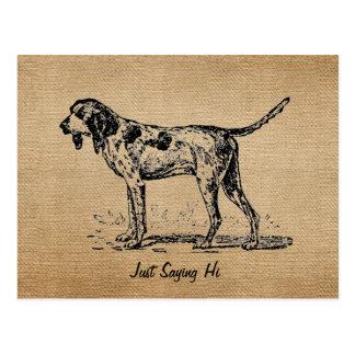 Burlap Vintage Hello Bird Dog Hunting Postcard