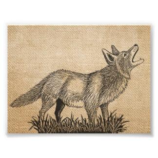 "Burlap Vintage Howling Wolf 7"" x 5"", Photographic Print"