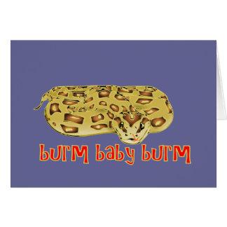 Burm Baby Burm Fire Burmese Python Cards