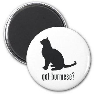 Burmese Cat 6 Cm Round Magnet