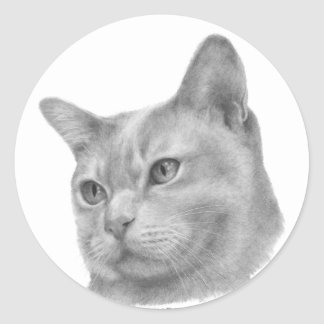 Burmese cat classic round sticker