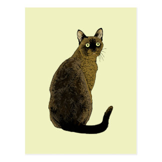 Burmese Cat Postcard
