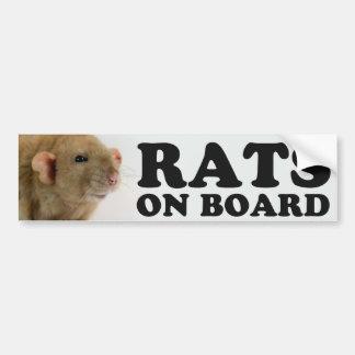 (Burmese) Rats one board Bumper Sticker