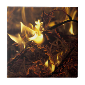 Burning Branches Small Square Tile