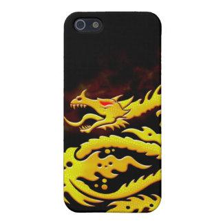 Burning Dragon Art Design iPhone Case iPhone 5/5S Cases