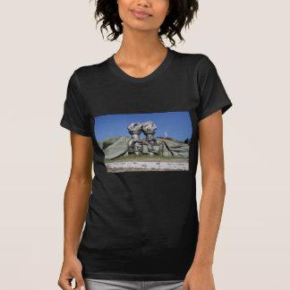 Burning torch sculpture Buzludzha monument T-Shirt
