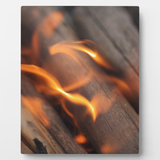 Burning wood branches photo plaque