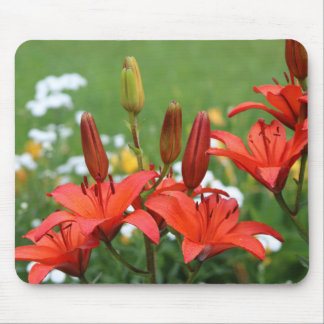 Burnt Orange Asiatic Lilies Mouse Pad