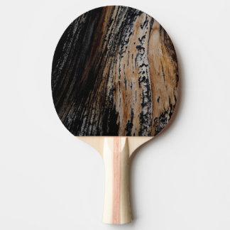 Burnt Tree Bark Texture