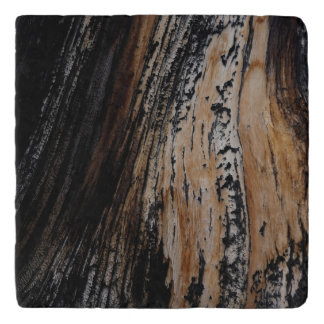 Burnt Tree Bark Texture Trivets