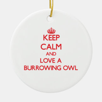 Burrowing Owl Ceramic Ornament