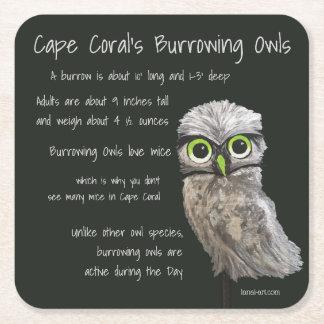 Burrowing Owl Coastal Art Cape Coral Florida Square Paper Coaster