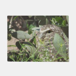 Burrowing Owl Doormat