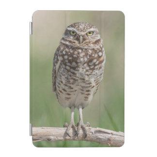 Burrowing Owl iPad case iPad Mini Cover