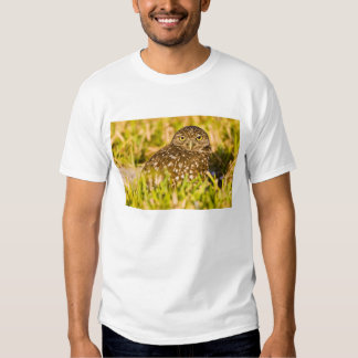 Burrowing owls are a popular site on Marco 3 T Shirt