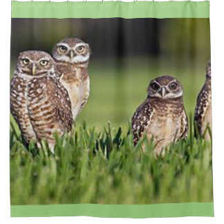 burrowing owls shower curtain
