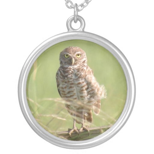 Burrowing Spotted owl Necklace