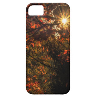 Burst of Fall iPhone 5 Cases
