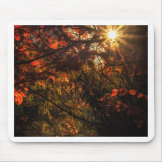 Burst of Fall Mouse Pad