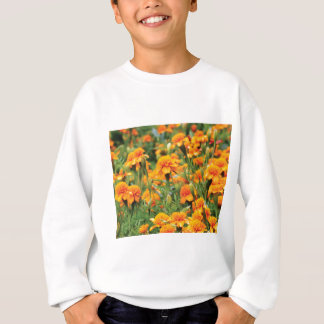burst of orange color sweatshirt