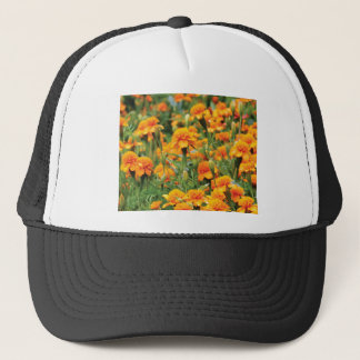 burst of orange color trucker hat