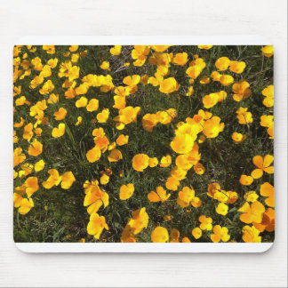 Burst of Spring Mouse Pad