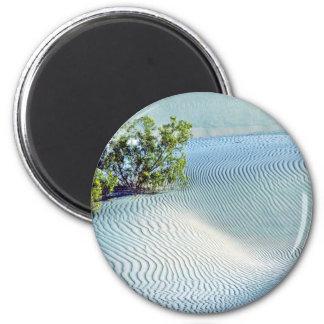 Bush And Rippled Sand, Big Dunes Magnet